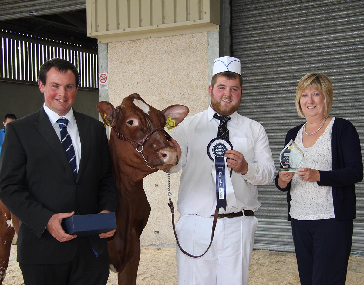 Maureen Currie, Danske Bank, presents the Shorthorn championship at the 14th annual multi-breed dairy calf show to John McLean, Bushmills, who exhibited Bushmills Prophets Petal. Included is judge David Christophers from Cornwall.