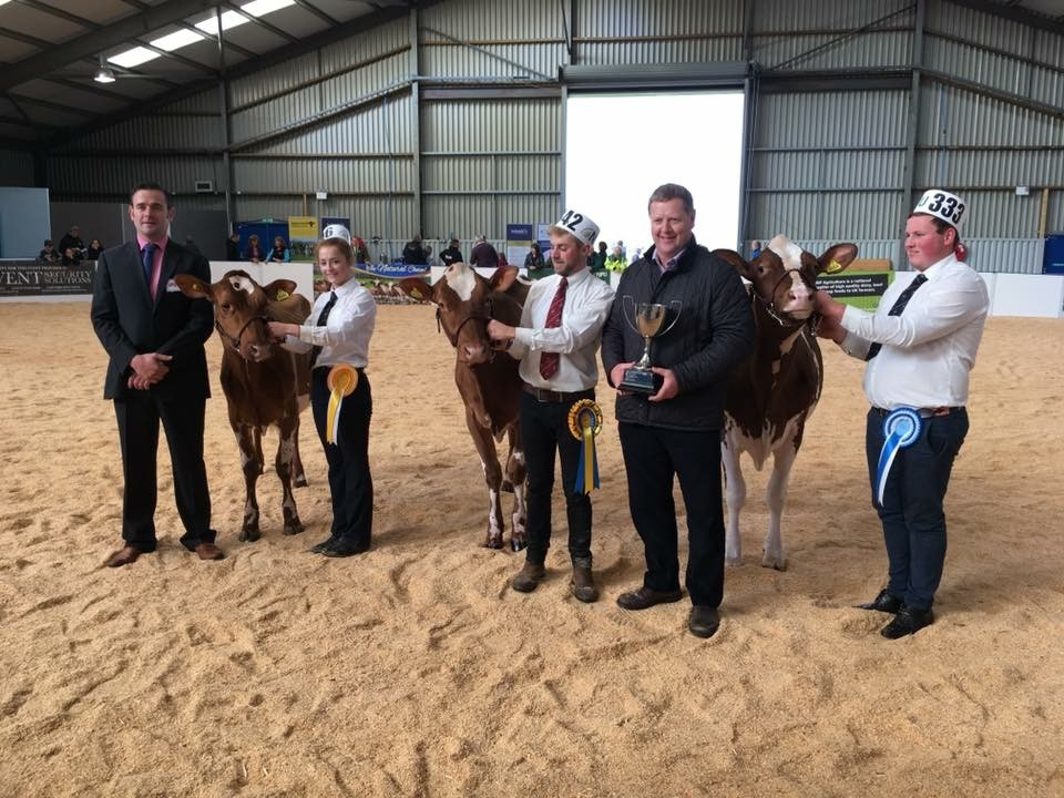 All Breeds All Britain Cotonhall Win Championship